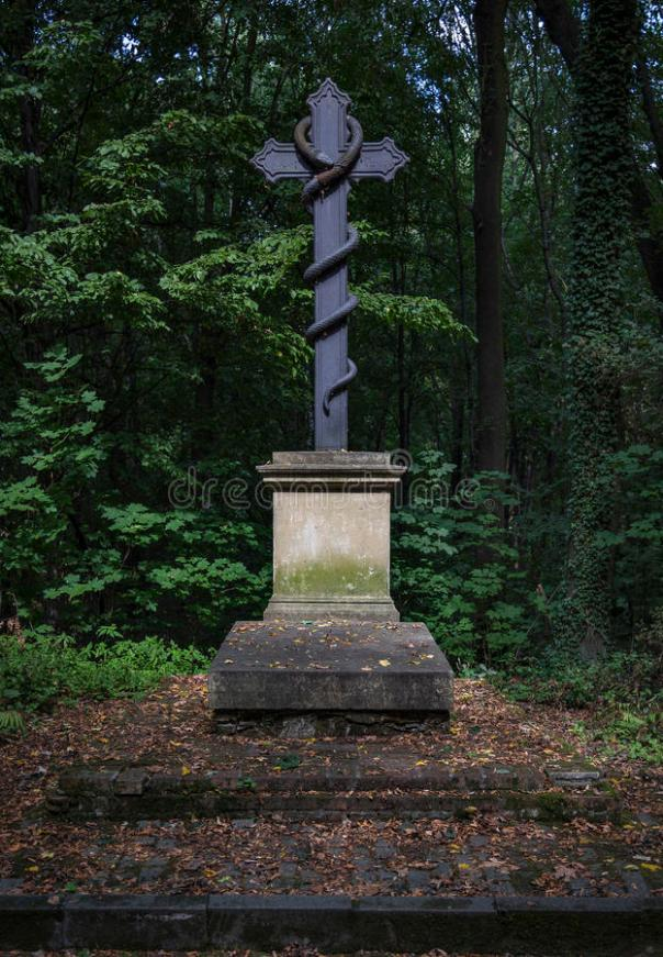 krzyż-z-wężem-58652794